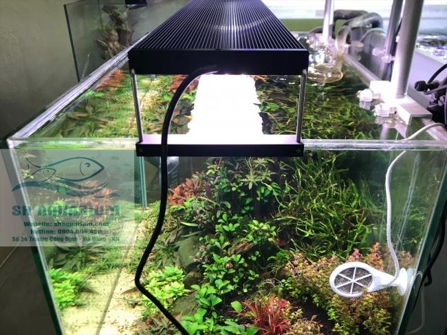 Đèn Chihiros WRGB2 60cm