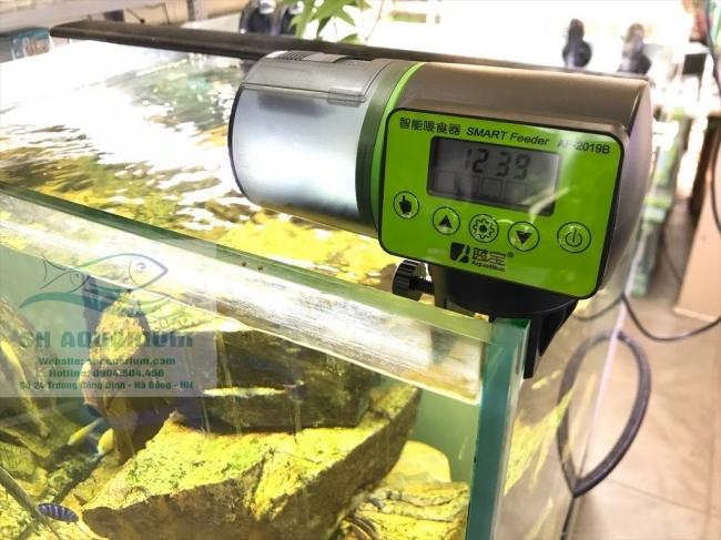 Máy cho cá ăn tự động Aqua Blue AF-2019B