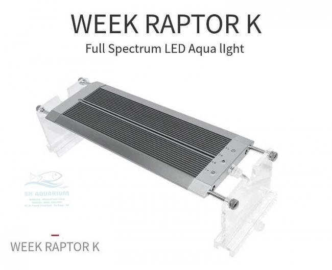 ĐÈN LED WEEK RAPTOR RGB D60CM
