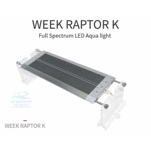 ĐÈN LED WEEK RAPTOR RGB D45CM