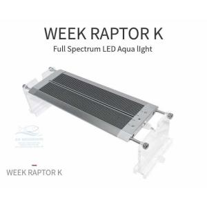 ĐÈN LED WEEK RAPTOR RGB D90CM