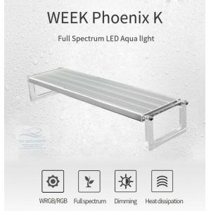 Đèn Led Week Phoenix WRGB 90Cm