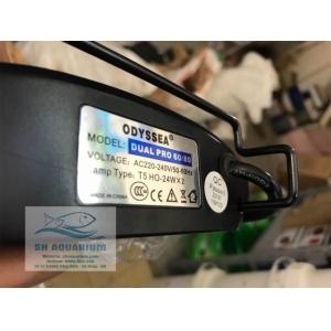 Đèn Odyssea Dual Pro T5HO 60cm