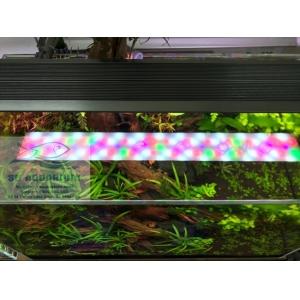 ĐÈN LED WEEK RAPTOR RGB D120CM