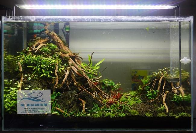 Đèn Led Odyssea A1 Pro Plant 500